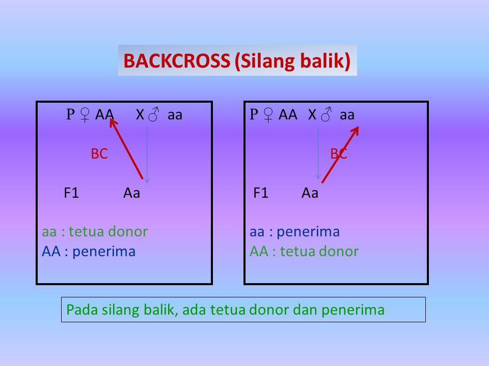 BACKCROSS Backcross atau silang balik adalah persilangan antara keturunan pertama dengan salah satu tetua (parents), Tujuannya untuk memindahkan gen atau sifat tertentu dari salah satu tetua.