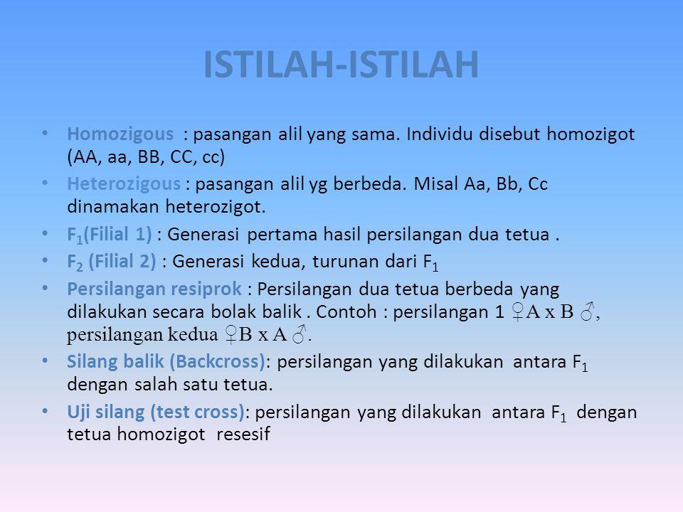 ISTILAH-ISTILAH Alel/alil : pasangan gen yang terletak pada kromosom homolog (gen A alel a atau A ). Lokus : posisi gen yang tetap pada kromosom Genot