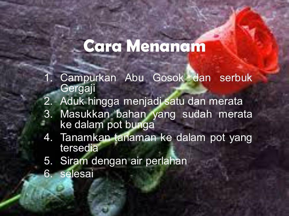 3. Pot Bunga