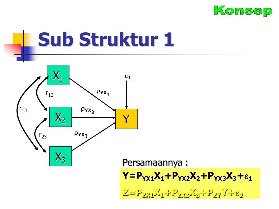 Sub Struktur 1 X1X1X1X1 X2X2X2X2 Y r 12  YX 1 X3X3X3X3 11  YX 2  YX 3 r 23 r 13 Y=P YX1 X 1 +P YX2 X 2 +P YX3 X 3 +  1 Z=P ZX1 X 1 +P ZX3 X 3 +P