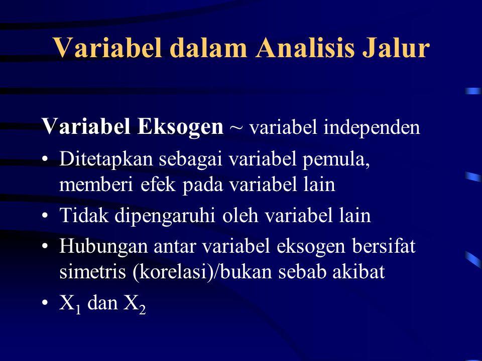 Variabel dalam Analisis Jalur Variabel Eksogen ~ variabel independen Ditetapkan sebagai variabel pemula, memberi efek pada variabel lain Tidak dipengaruhi oleh variabel lain simetrisHubungan antar variabel eksogen bersifat simetris (korelasi)/bukan sebab akibat X 1 dan X 2