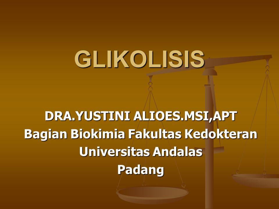GLIKOLISIS DRA.YUSTINI ALIOES.MSI,APT Bagian Biokimia Fakultas Kedokteran Universitas Andalas Padang