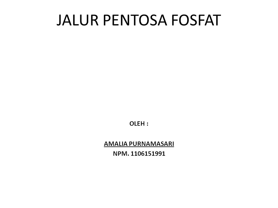 JALUR PENTOSA FOSFAT OLEH : AMALIA PURNAMASARI NPM. 1106151991
