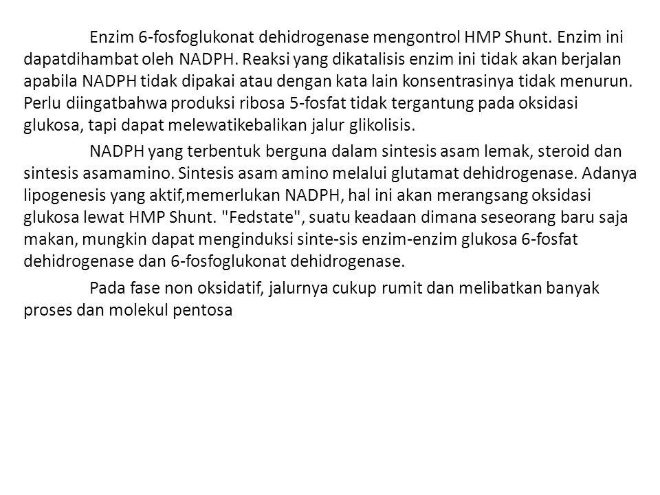 Enzim 6-fosfoglukonat dehidrogenase mengontrol HMP Shunt. Enzim ini dapatdihambat oleh NADPH. Reaksi yang dikatalisis enzim ini tidak akan berjalan ap