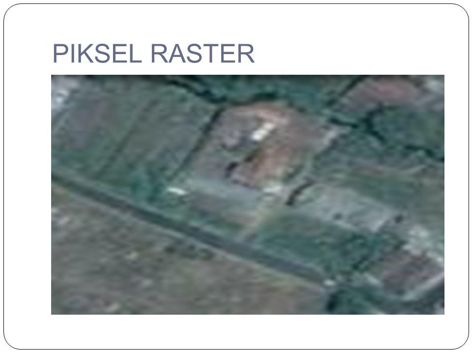 PIKSEL RASTER
