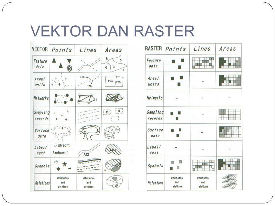 VEKTOR DAN RASTER