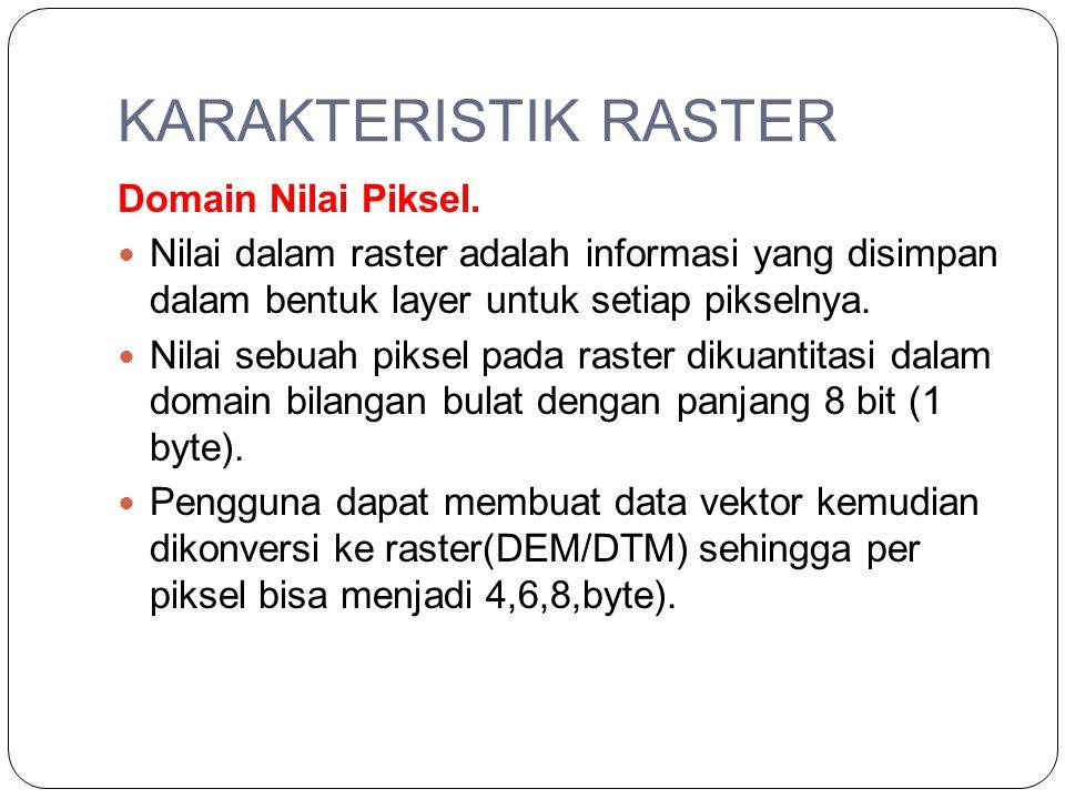 KARAKTERISTIK RASTER Domain Nilai Piksel. Nilai dalam raster adalah informasi yang disimpan dalam bentuk layer untuk setiap pikselnya. Nilai sebuah pi