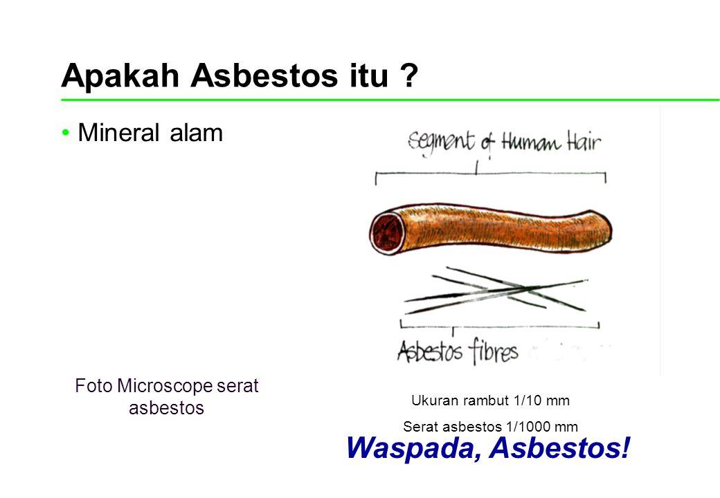 Apakah Asbestos itu ? Mineral alam Ukuran rambut 1/10 mm Serat asbestos 1/1000 mm Waspada, Asbestos! Foto Microscope serat asbestos