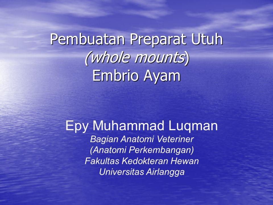 Pembuatan Preparat Utuh (whole mounts) Embrio Ayam Epy Muhammad Luqman Bagian Anatomi Veteriner (Anatomi Perkembangan) Fakultas Kedokteran Hewan Universitas Airlangga