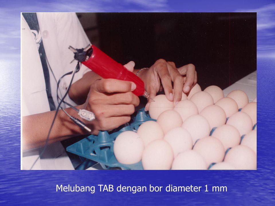 Melubang TAB dengan bor diameter 1 mm