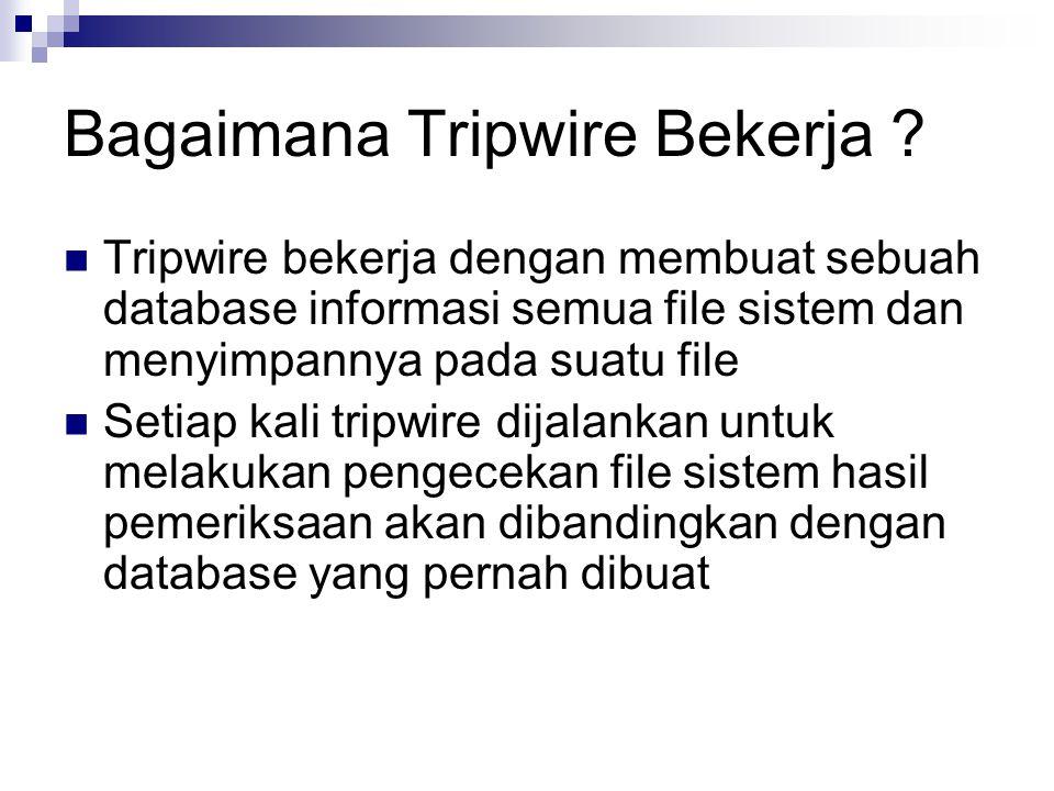 Apa yang dikerjakan Tripwire .
