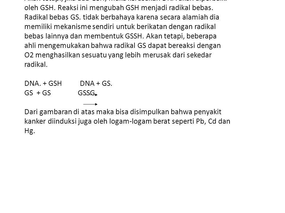 Akan tetapi, jika ada GSH, maka kerusakan DNA akan diperbaiki oleh GSH. Reaksi ini mengubah GSH menjadi radikal bebas. Radikal bebas GS. tidak berbaha