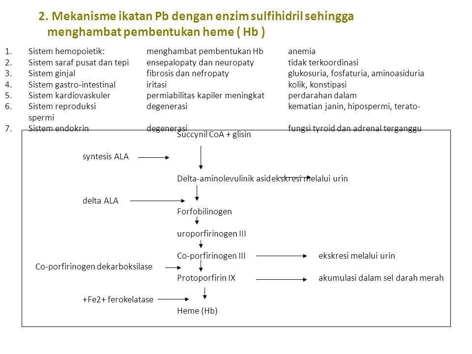 2. Mekanisme ikatan Pb dengan enzim sulfihidril sehingga menghambat pembentukan heme ( Hb ) 1.Sistem hemopoietik:menghambat pembentukan Hbanemia 2.Sis
