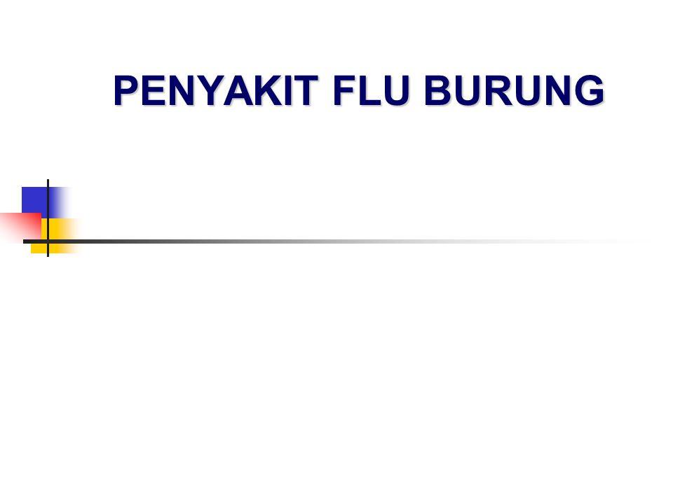 PENYAKIT FLU BURUNG
