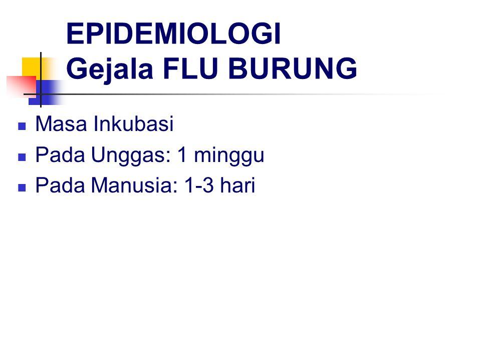 EPIDEMIOLOGI Gejala FLU BURUNG Masa Inkubasi Pada Unggas: 1 minggu Pada Manusia: 1-3 hari