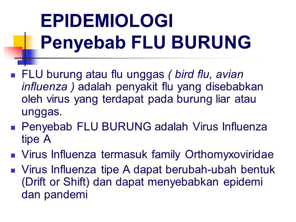 EPIDEMIOLOGI Penyebab FLU BURUNG FLU burung atau flu unggas ( bird flu, avian influenza ) adalah penyakit flu yang disebabkan oleh virus yang terdapat pada burung liar atau unggas.