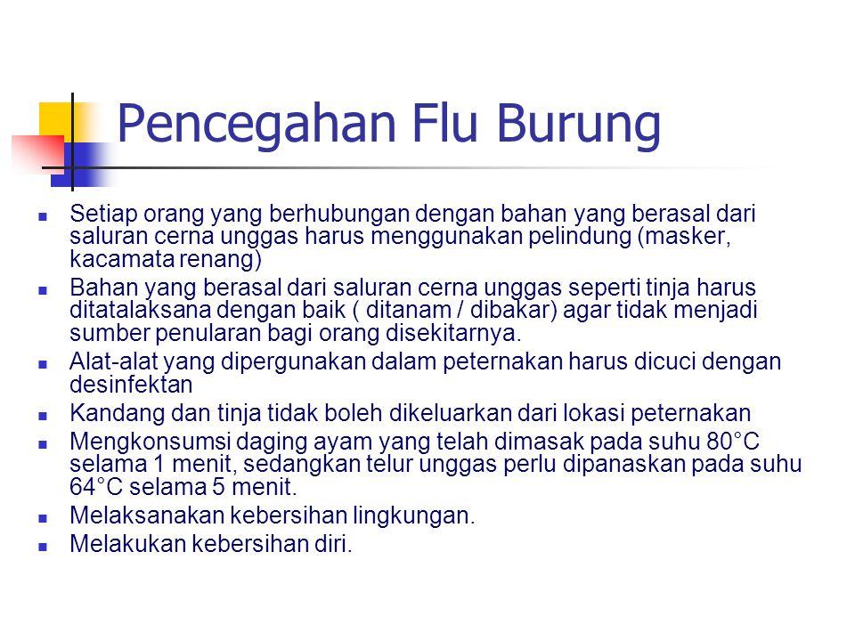 Pencegahan Flu Burung Setiap orang yang berhubungan dengan bahan yang berasal dari saluran cerna unggas harus menggunakan pelindung (masker, kacamata renang) Bahan yang berasal dari saluran cerna unggas seperti tinja harus ditatalaksana dengan baik ( ditanam / dibakar) agar tidak menjadi sumber penularan bagi orang disekitarnya.