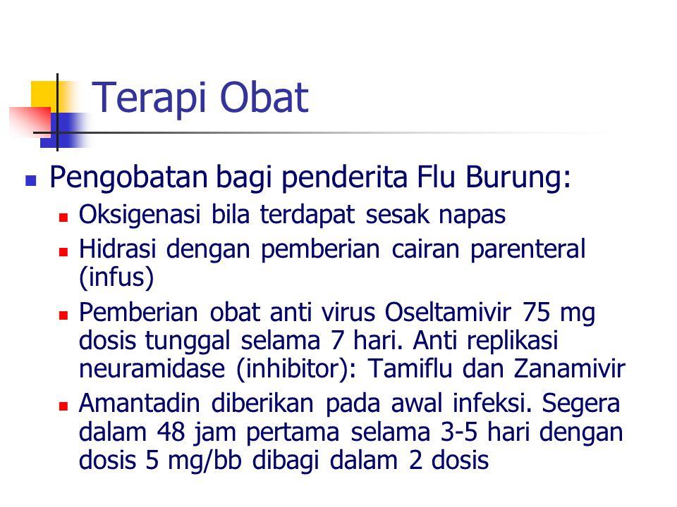Terapi Obat Pengobatan bagi penderita Flu Burung: Oksigenasi bila terdapat sesak napas Hidrasi dengan pemberian cairan parenteral (infus) Pemberian obat anti virus Oseltamivir 75 mg dosis tunggal selama 7 hari.