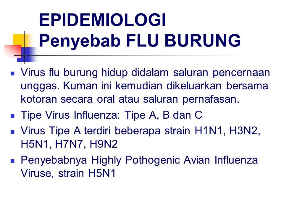 EPIDEMIOLOGI Penyebab FLU BURUNG Virus flu burung hidup didalam saluran pencernaan unggas. Kuman ini kemudian dikeluarkan bersama kotoran secara oral