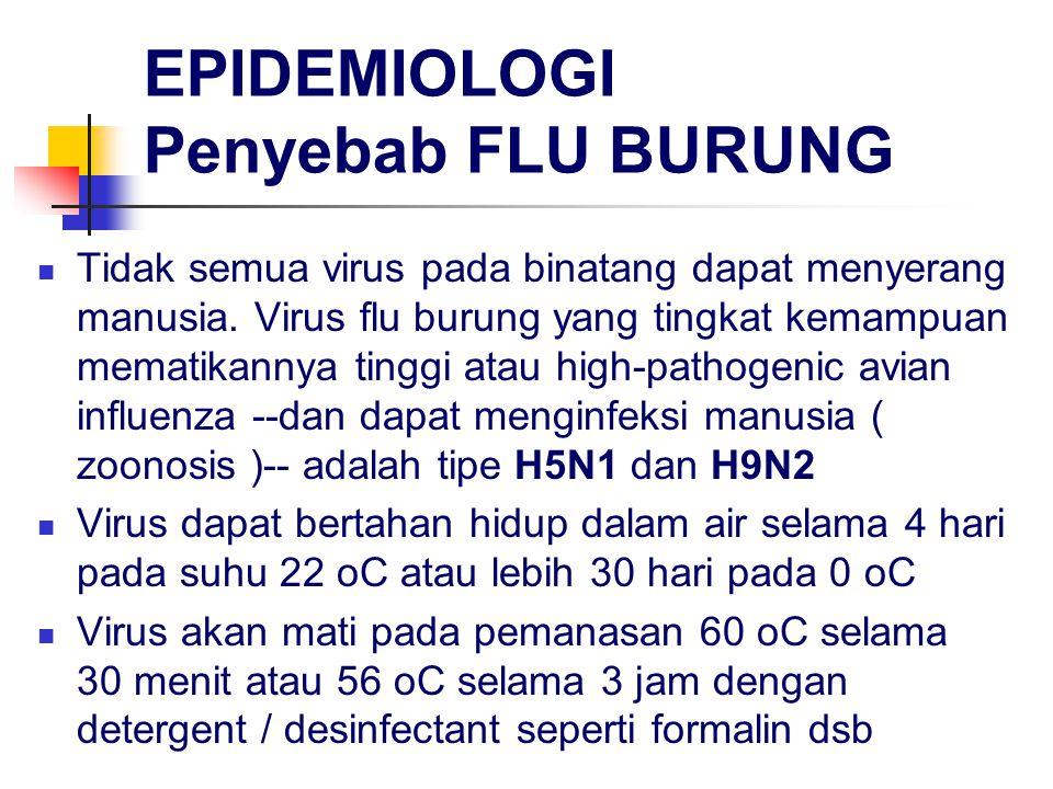 EPIDEMIOLOGI Penyebab FLU BURUNG Tidak semua virus pada binatang dapat menyerang manusia. Virus flu burung yang tingkat kemampuan mematikannya tinggi
