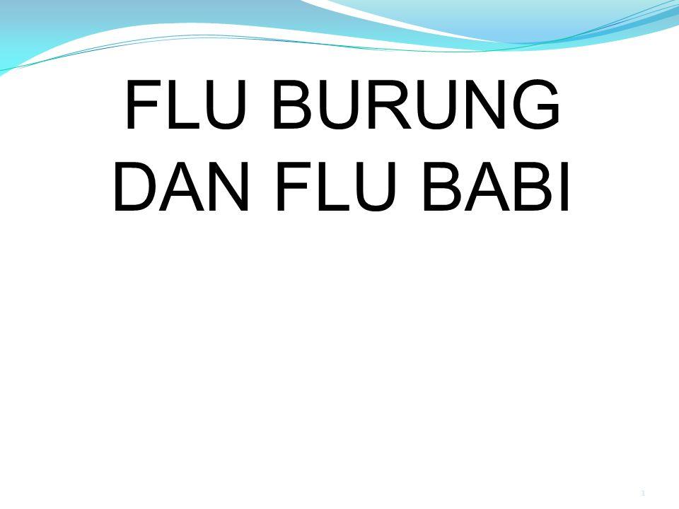 1 FLU BURUNG DAN FLU BABI
