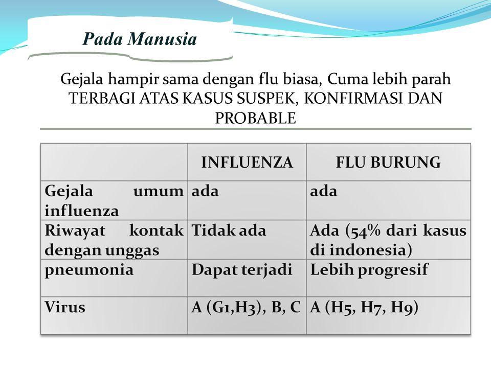 2. Pada Manusia Gejala hampir sama dengan flu biasa, Cuma lebih parah TERBAGI ATAS KASUS SUSPEK, KONFIRMASI DAN PROBABLE Gejala hampir sama dengan flu