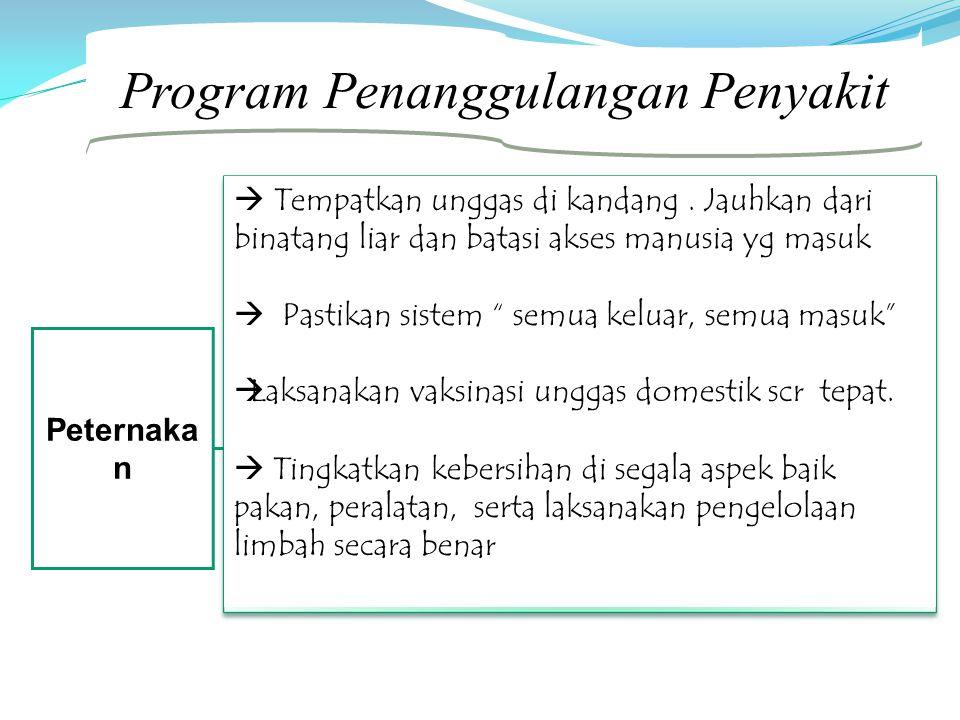 Program Penanggulangan Penyakit Peternaka n  Tempatkan unggas di kandang. Jauhkan dari binatang liar dan batasi akses manusia yg masuk  Pastikan sis