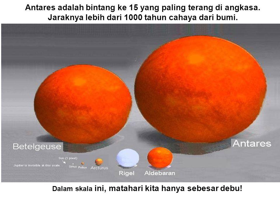 Dalam skala ini, matahari kita hanya sebesar debu.