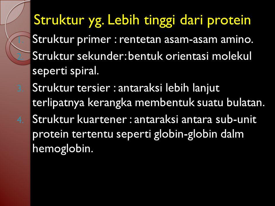 Struktur yg.Lebih tinggi dari protein 1. Struktur primer : rentetan asam-asam amino.