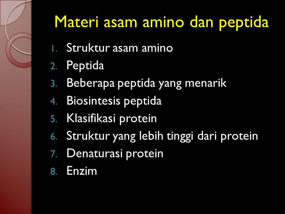 """Asam amino dan Peptida Protein kelompok senyawa yang terpenting dalam organisme hewan. Protein ( Proteios = """"pertama"""" Yun.) adalah poliamida. Hidrolis"""
