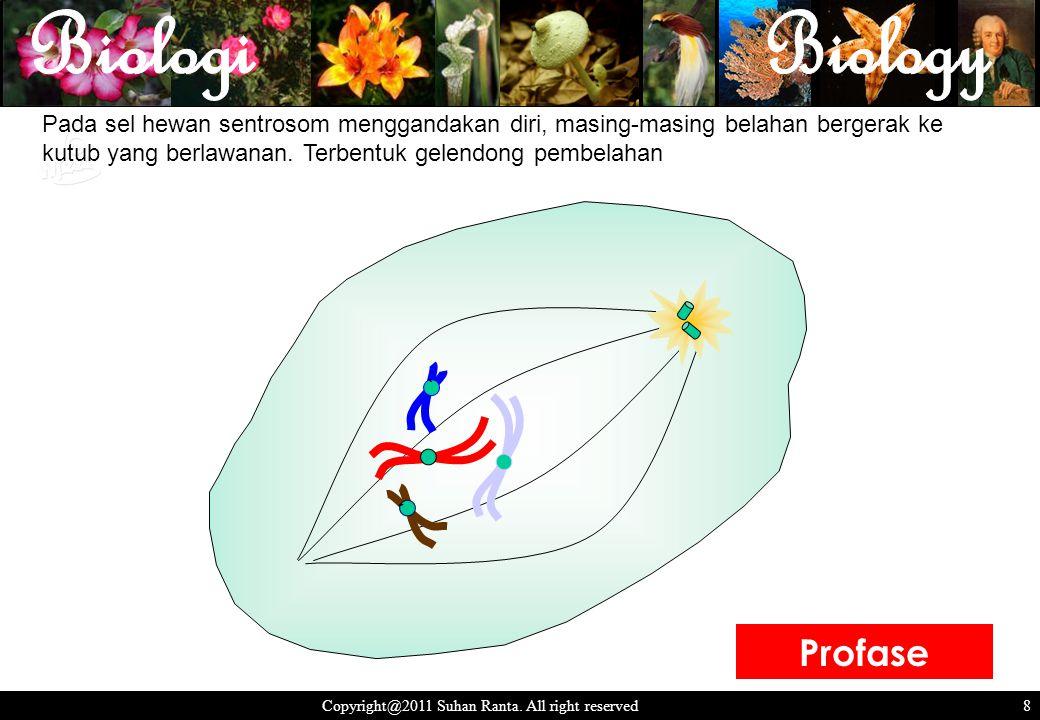 8 Copyright@2011 Suhan Ranta.