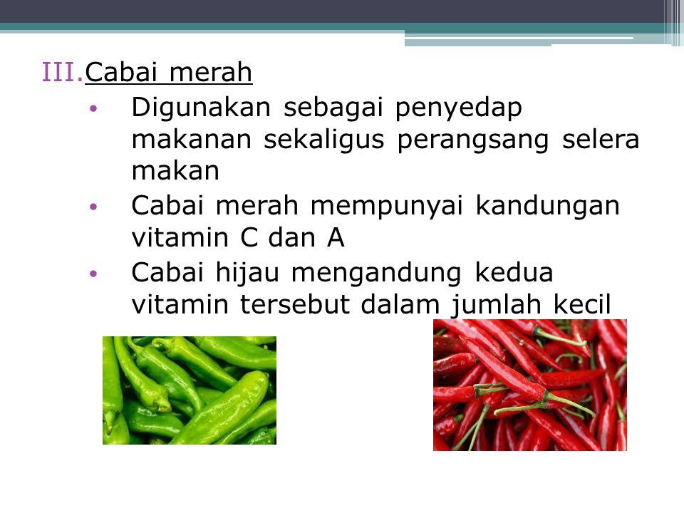 III.Cabai merah Digunakan sebagai penyedap makanan sekaligus perangsang selera makan Cabai merah mempunyai kandungan vitamin C dan A Cabai hijau menga