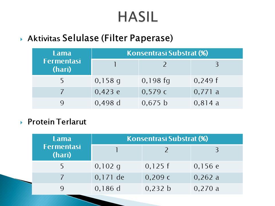  Aktivitas Spesifik Selulase (Filter Paperase) Lama Fermentasi (hari) Konsentrasi Substrat (%) 123 51,545 e1,586 e1,601 e 72,478 d2,764 bc2,940 ab 92,681 c2,914 b3,014 a
