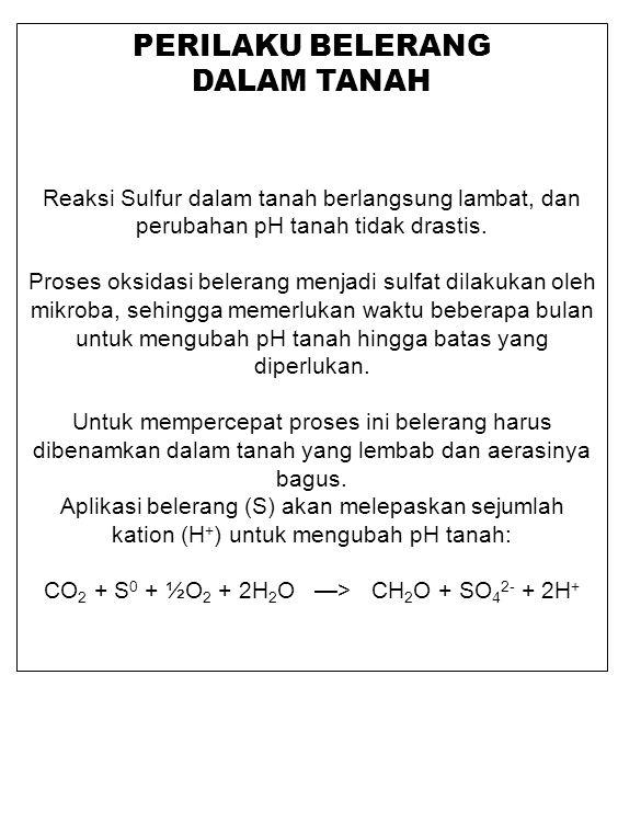 PERILAKU BELERANG DALAM TANAH Reaksi Sulfur dalam tanah berlangsung lambat, dan perubahan pH tanah tidak drastis. Proses oksidasi belerang menjadi sul
