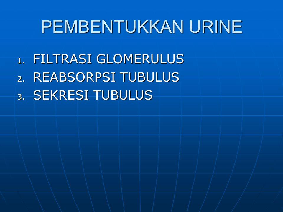 PEMBENTUKKAN URINE 1. FILTRASI GLOMERULUS 2. REABSORPSI TUBULUS 3. SEKRESI TUBULUS