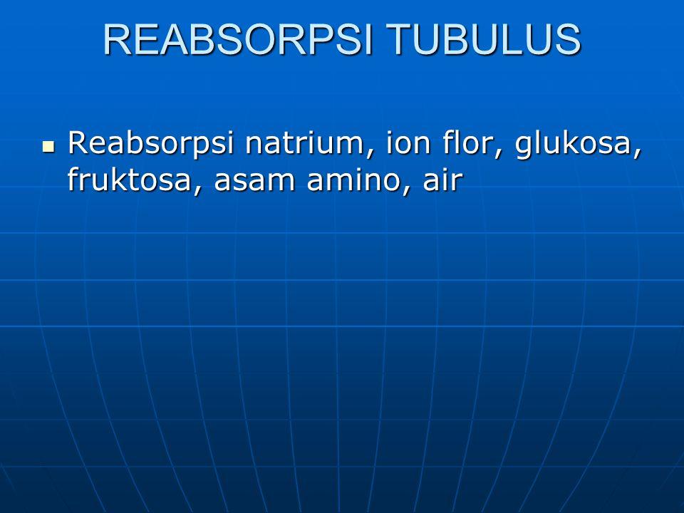 REABSORPSI TUBULUS Reabsorpsi natrium, ion flor, glukosa, fruktosa, asam amino, air Reabsorpsi natrium, ion flor, glukosa, fruktosa, asam amino, air