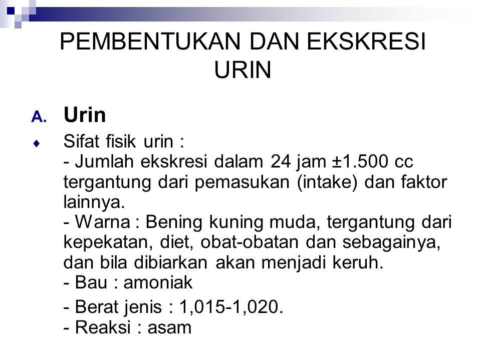 PEMBENTUKAN DAN EKSKRESI URIN A. Urin  Sifat fisik urin : - Jumlah ekskresi dalam 24 jam ±1.500 cc tergantung dari pemasukan (intake) dan faktor lain