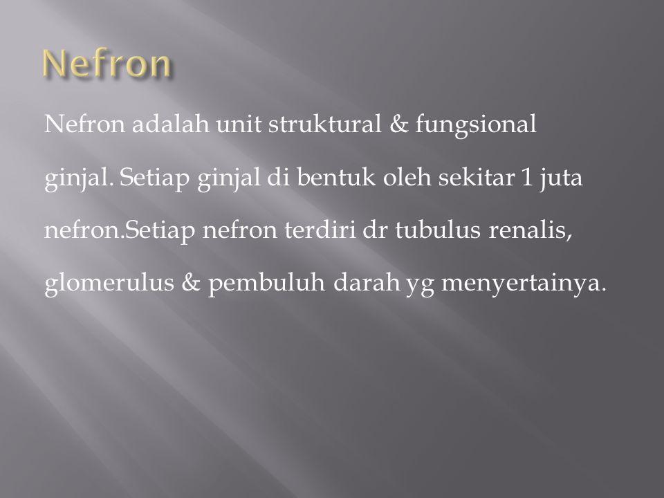 Nefron adalah unit struktural & fungsional ginjal.