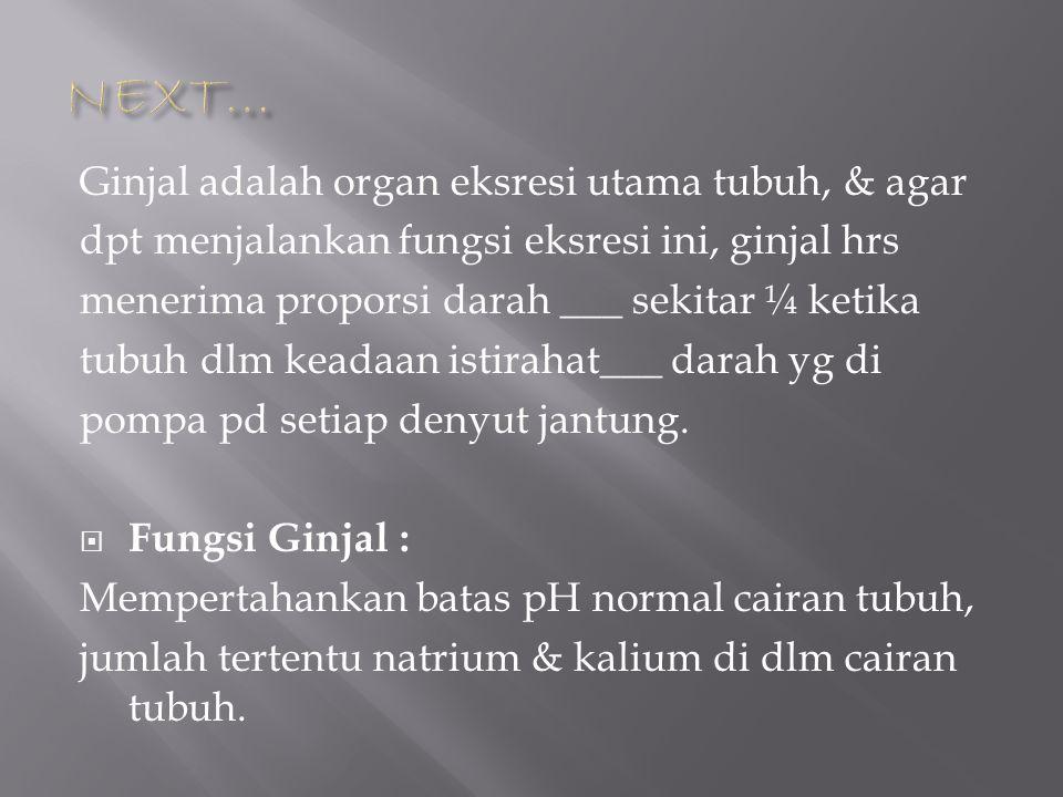 Ginjal adalah organ eksresi utama tubuh, & agar dpt menjalankan fungsi eksresi ini, ginjal hrs menerima proporsi darah ___ sekitar ¼ ketika tubuh dlm
