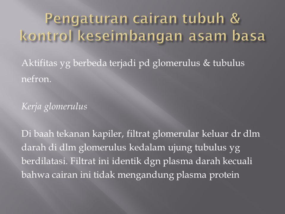 Aktifitas yg berbeda terjadi pd glomerulus & tubulus nefron.