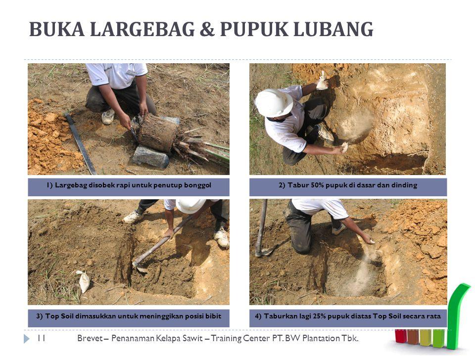 BUKA LARGEBAG & PUPUK LUBANG 11Brevet – Penanaman Kelapa Sawit – Training Center PT.