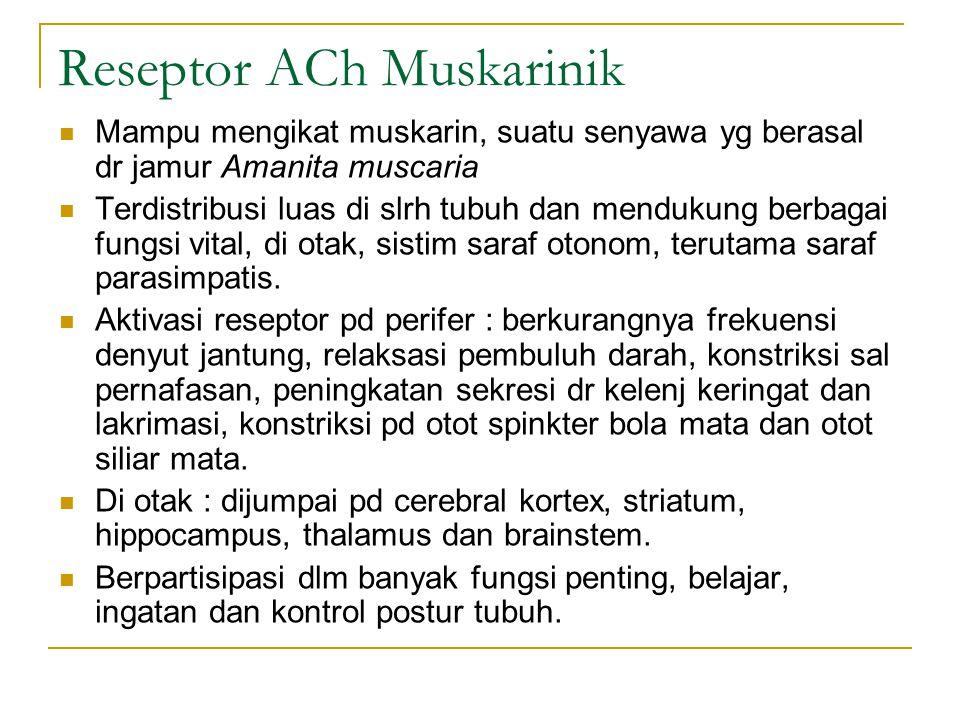 Reseptor ACh Muskarinik Mampu mengikat muskarin, suatu senyawa yg berasal dr jamur Amanita muscaria Terdistribusi luas di slrh tubuh dan mendukung berbagai fungsi vital, di otak, sistim saraf otonom, terutama saraf parasimpatis.
