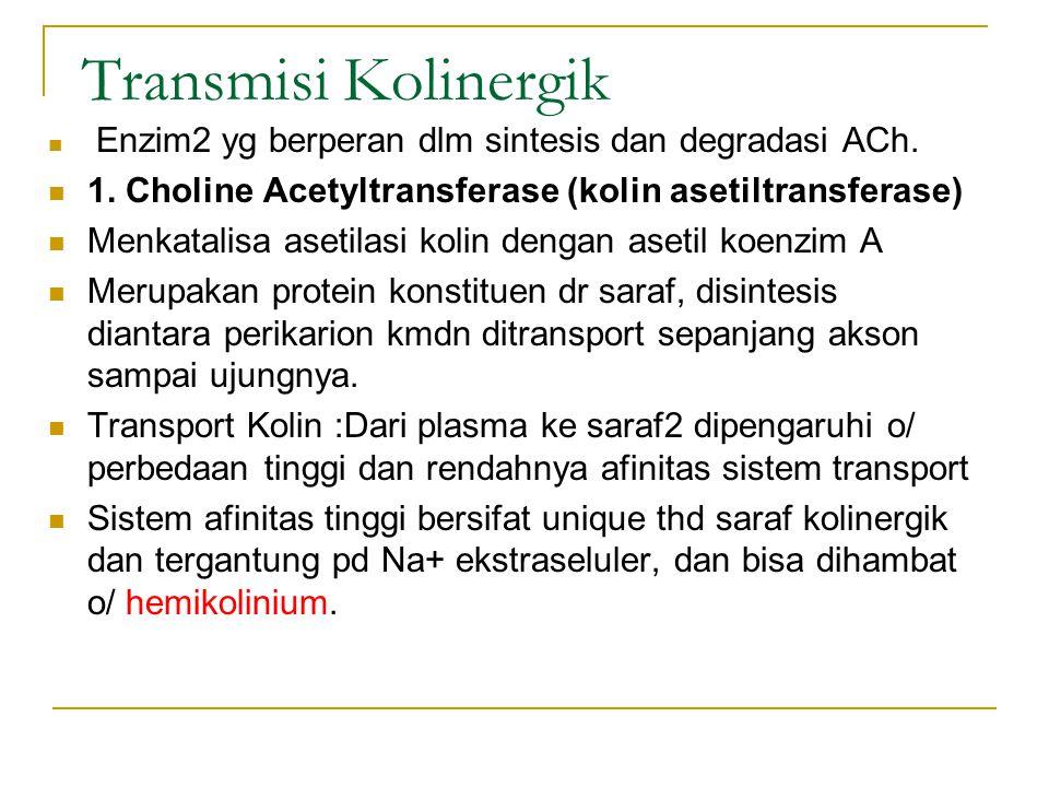 Transmisi Kolinergik Enzim2 yg berperan dlm sintesis dan degradasi ACh.