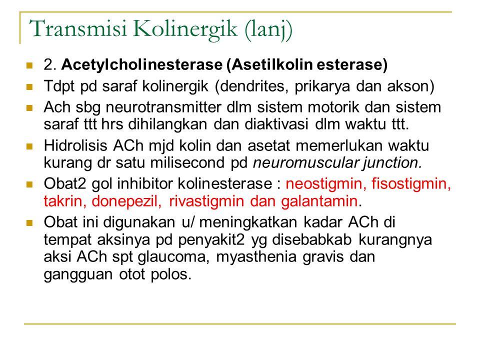 Transmisi Kolinergik (lanj) 2.