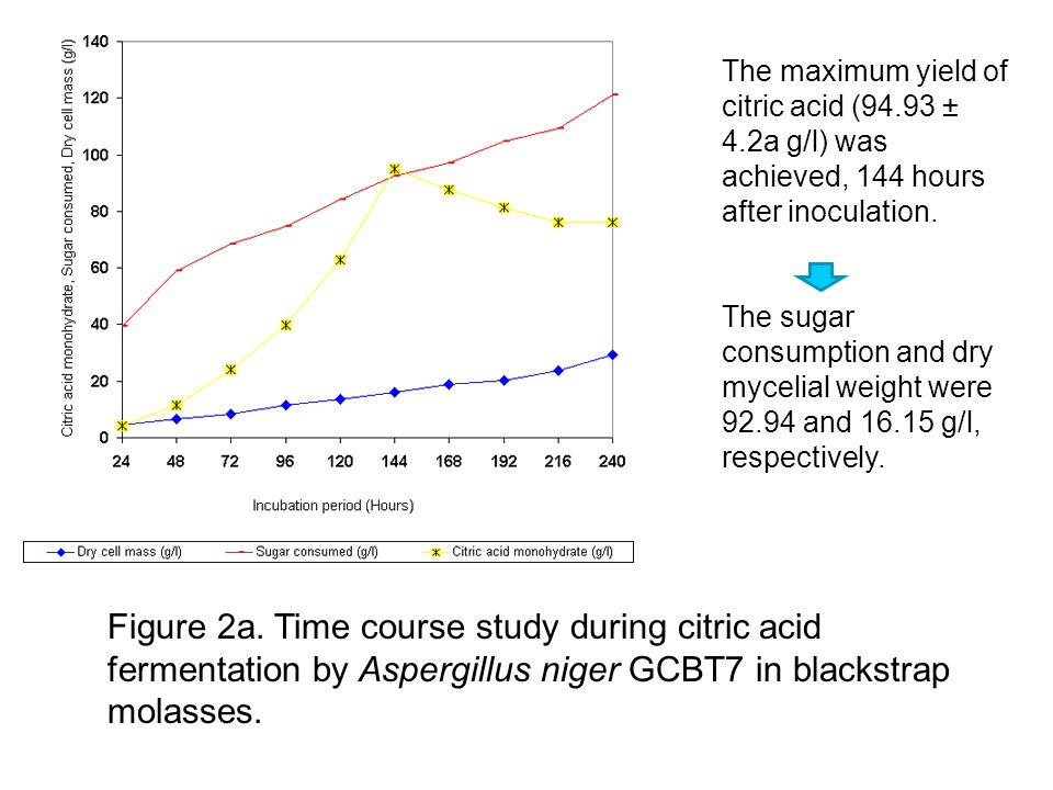 Figure 2a. Time course study during citric acid fermentation by Aspergillus niger GCBT7 in blackstrap molasses. The maximum yield of citric acid (94.9