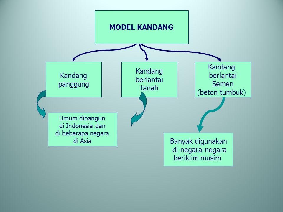 Kandang panggung Kandang berlantai tanah Kandang berlantai Semen (beton tumbuk) MODEL KANDANG Umum dibangun di Indonesia dan di beberapa negara di Asi