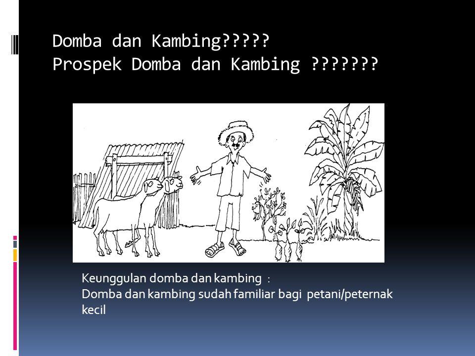 Domba dan Kambing????? Prospek Domba dan Kambing ??????? Keunggulan domba dan kambing : Domba dan kambing sudah familiar bagi petani/peternak kecil