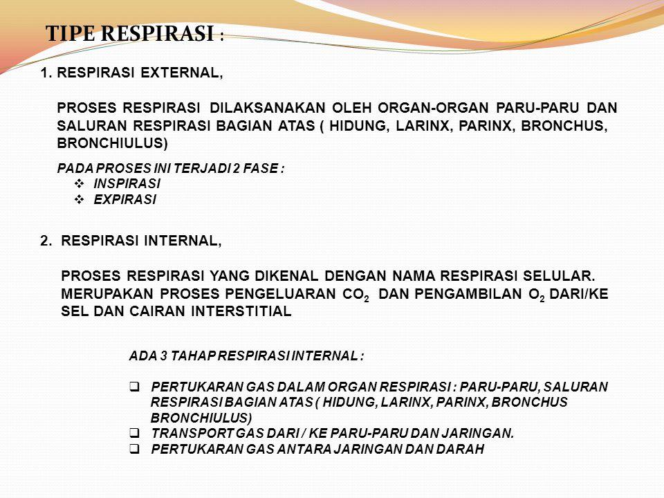 TIPE RESPIRASI : 1.RESPIRASI EXTERNAL, PROSES RESPIRASI DILAKSANAKAN OLEH ORGAN-ORGAN PARU-PARU DAN SALURAN RESPIRASI BAGIAN ATAS ( HIDUNG, LARINX, PA