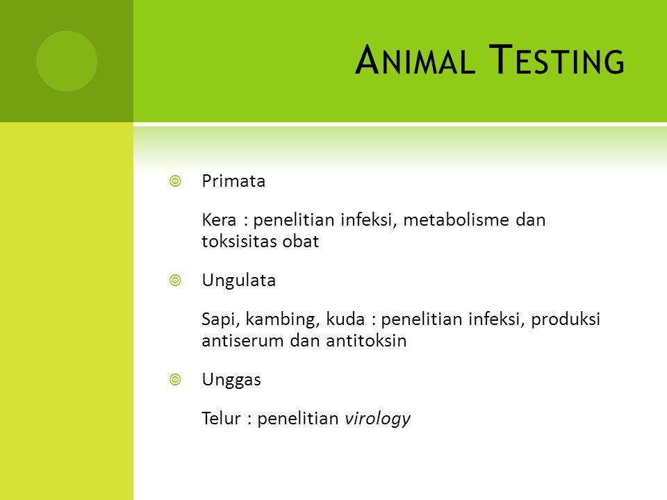 A NIMAL T ESTING  Primata Kera : penelitian infeksi, metabolisme dan toksisitas obat  Ungulata Sapi, kambing, kuda : penelitian infeksi, produksi an