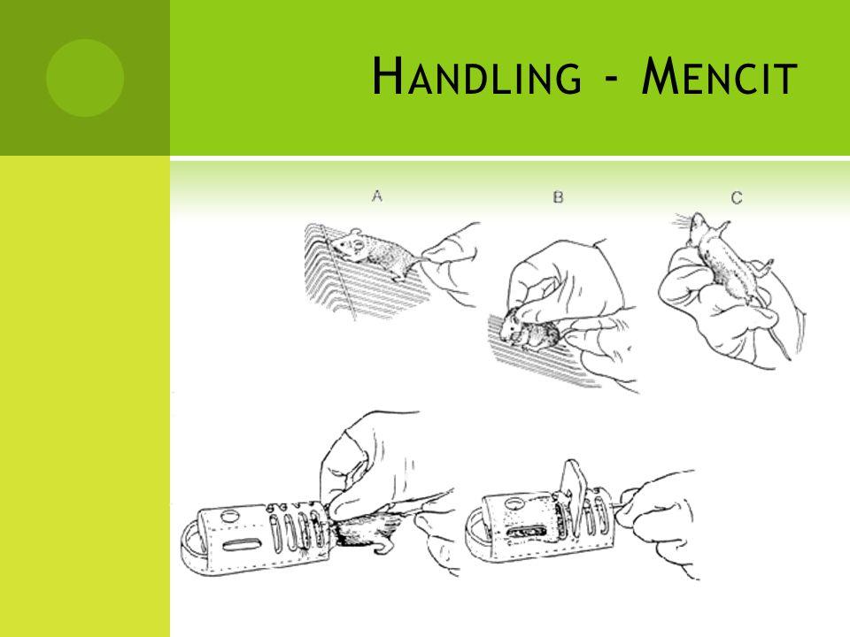 H ANDLING - M ENCIT